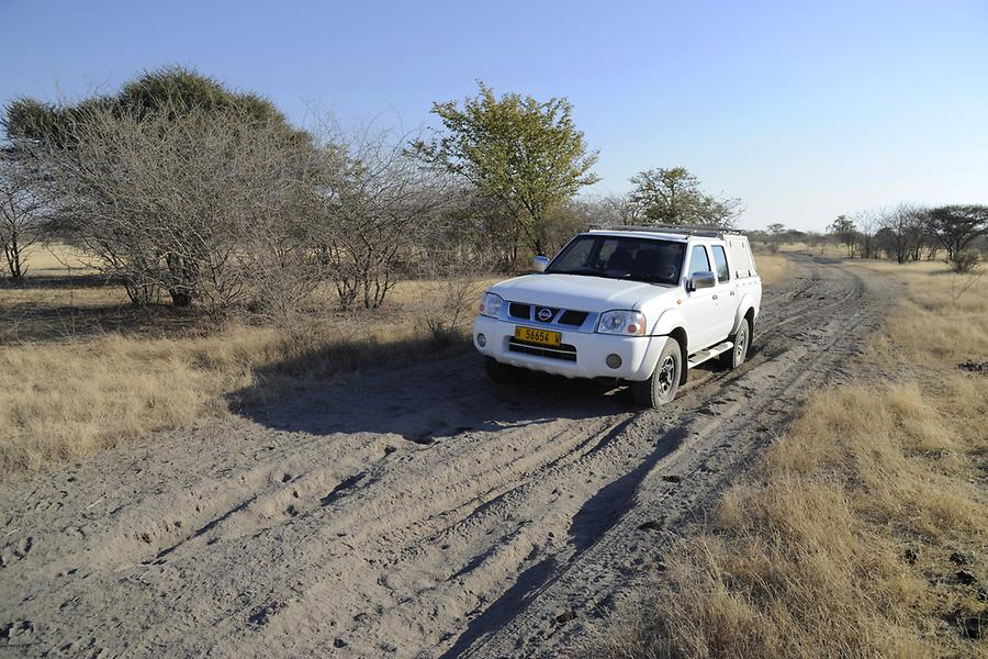 On the way to Makgadikgadi Pan
