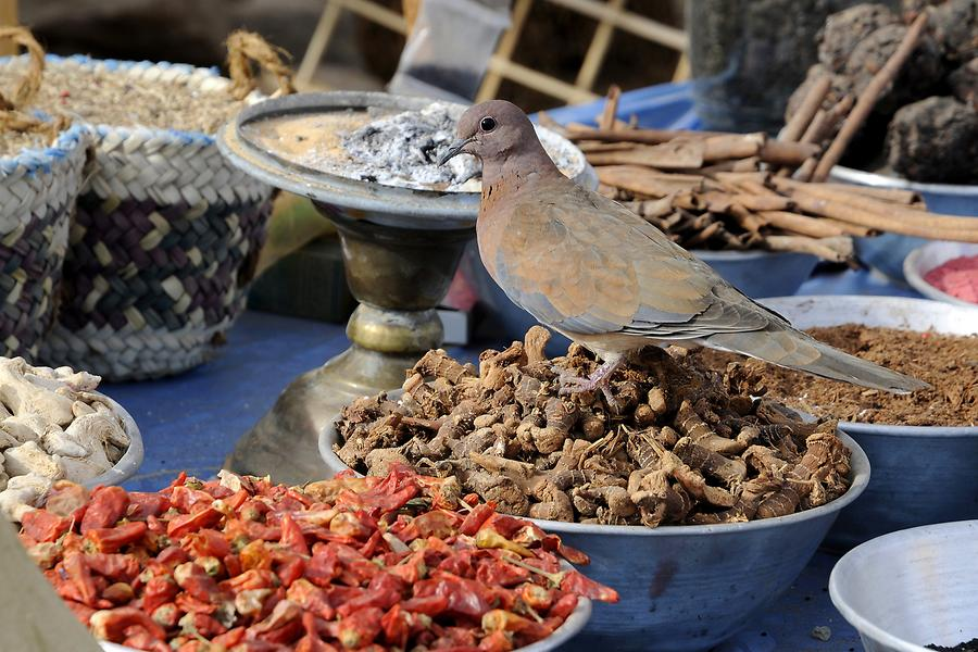 Nubian Village - Spices and Herbs