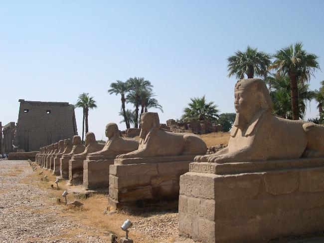 Avenue of Sphinxes, Luxor (1)