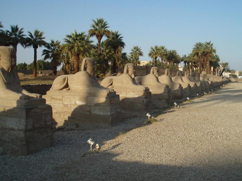 Avenue of Sphinxes, Luxor (2)