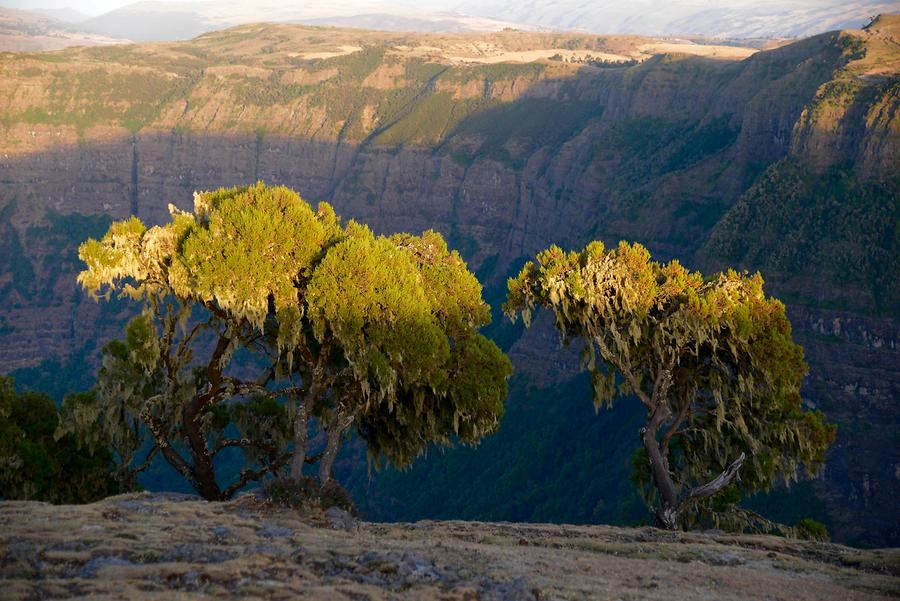 Simien Mountains National Park - Sunset
