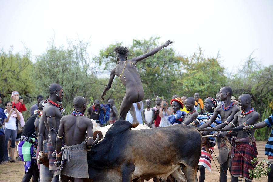 Bull-jumping Ceremony