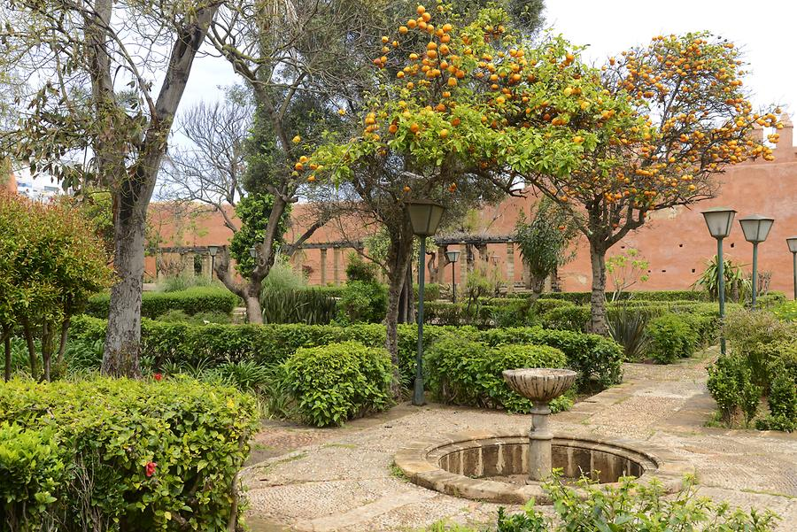 Rabat - Kasbah of the Udayas, Garden