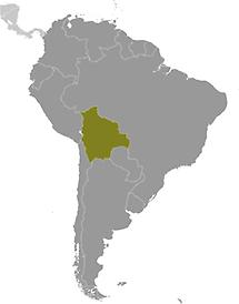 Bolivia in South America