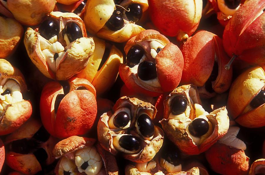 Brown's Town - Market; Ackee
