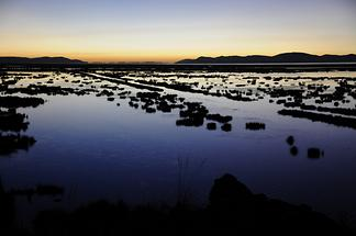 Lake Titicaca - Sunrise