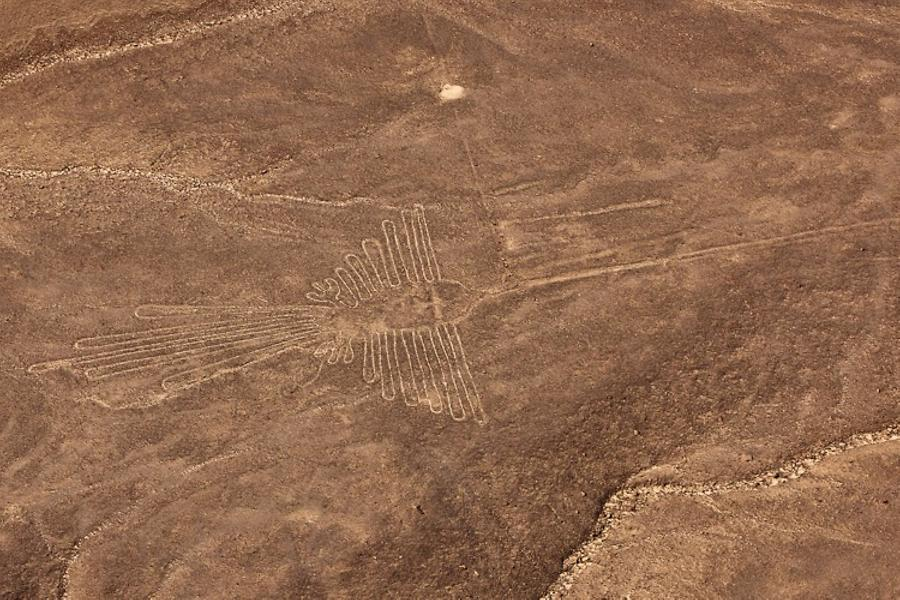Nazca lines, the Condor bird