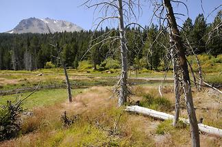 Lassen Volcanic National Park (1)