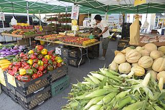 Union Square - Greenmarket (2)