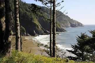 Cliff Coast near Heceta Head Lighthouse