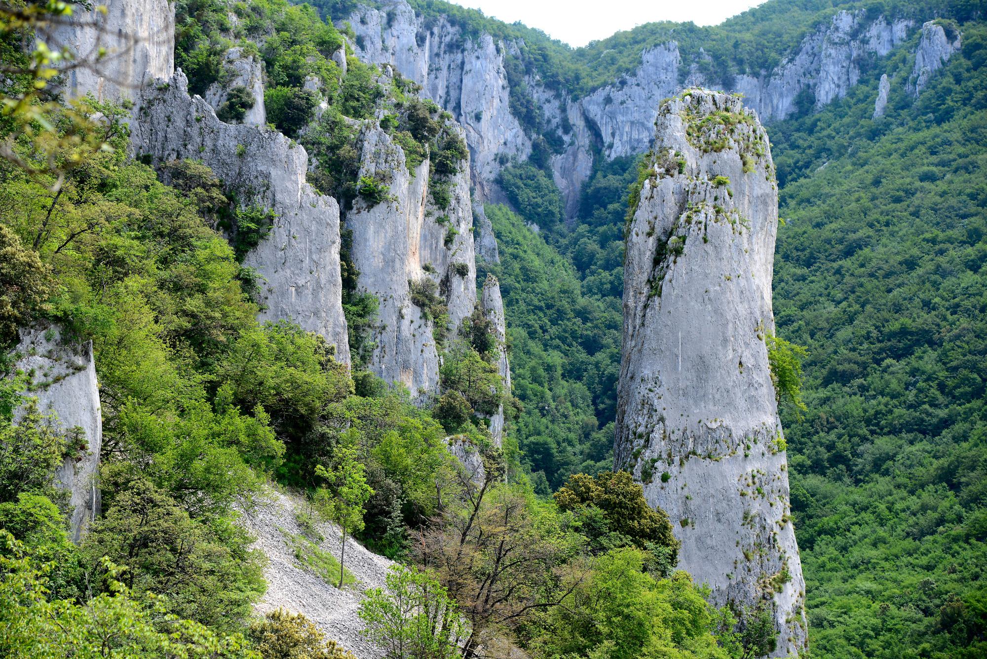 Vranjska Draga Canyon (4)   Poreč   Pictures   Croatia in
