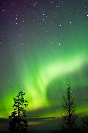 Northern lights in Rovaniemi