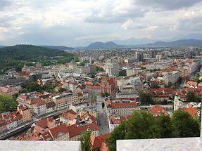 Panoramic View from the Observation Tower (1)